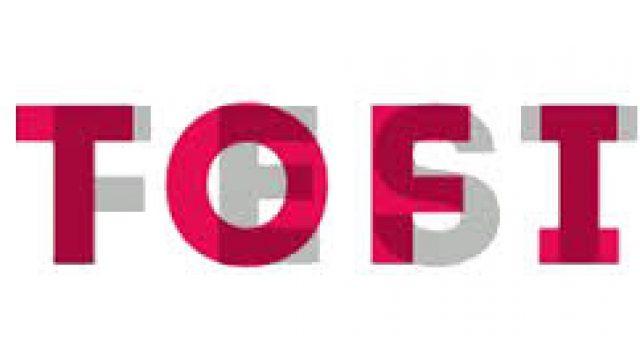 TOFI 13 Międzynarodowy Festiwal Flimowy Toffifest